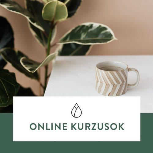 Online kurzusok • márkaépítéshez